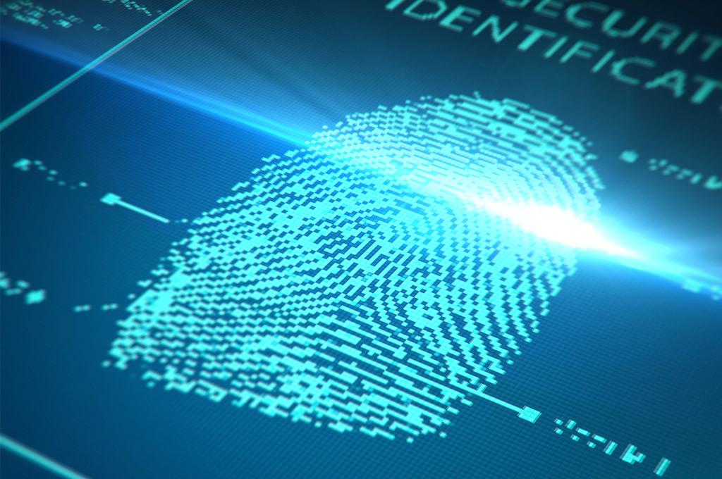 Seguridad y criptografía
